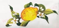 citron stredomorsky dekor
